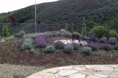 Geoffrey worked with our landscaper & put in over 300 Lavender, over 300 Rosemary plants, & over 200 trees!