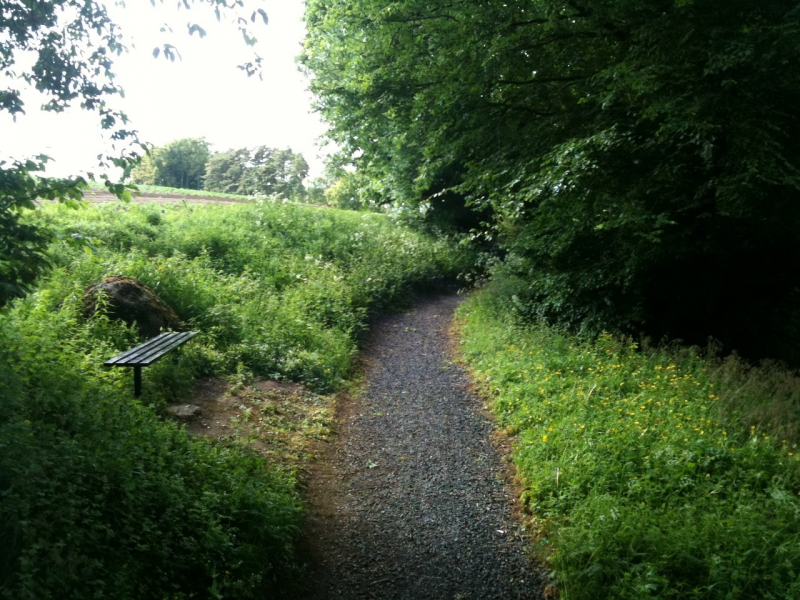 THE KENNOWAY DEN--Strolling along the footpaths.